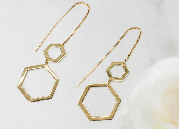 Hexagon Pendant Shape Dangle Earrings