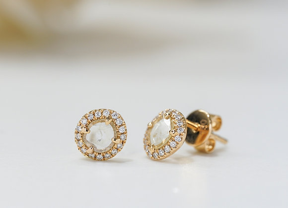 Glassia Studs Earrings