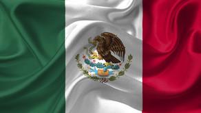 Martha Barcena: Response to the COVID-19 Outbreak in Mexico
