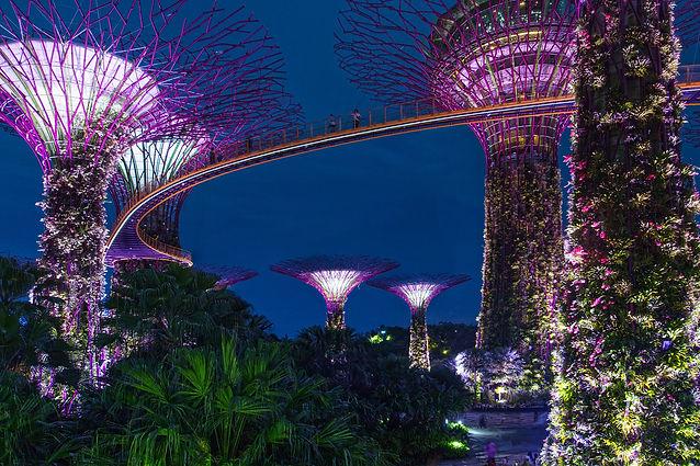 singapore-1927733_1920.jpg