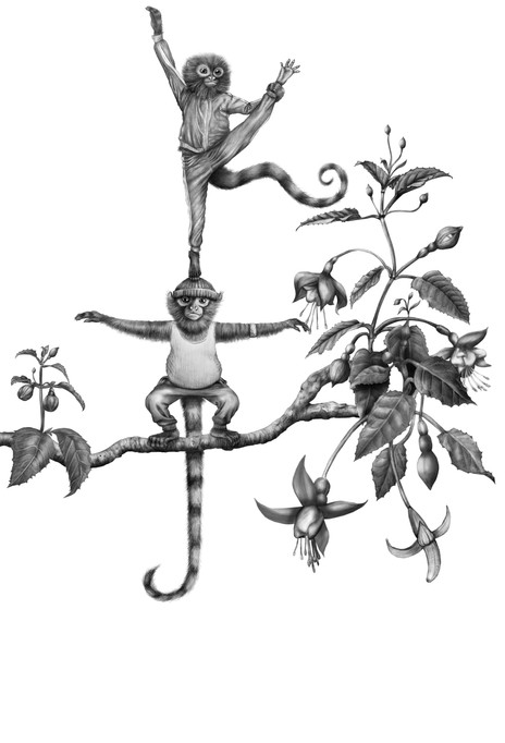 Monkey in Training IV–V