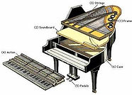 PianoCrossSection.jpg