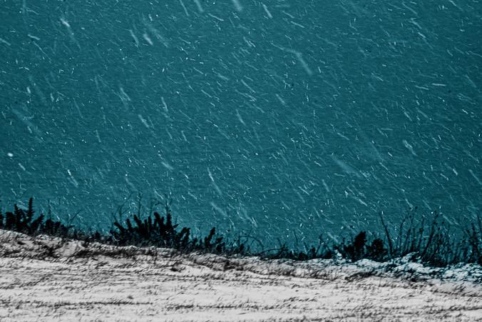 Winter 016.jpg