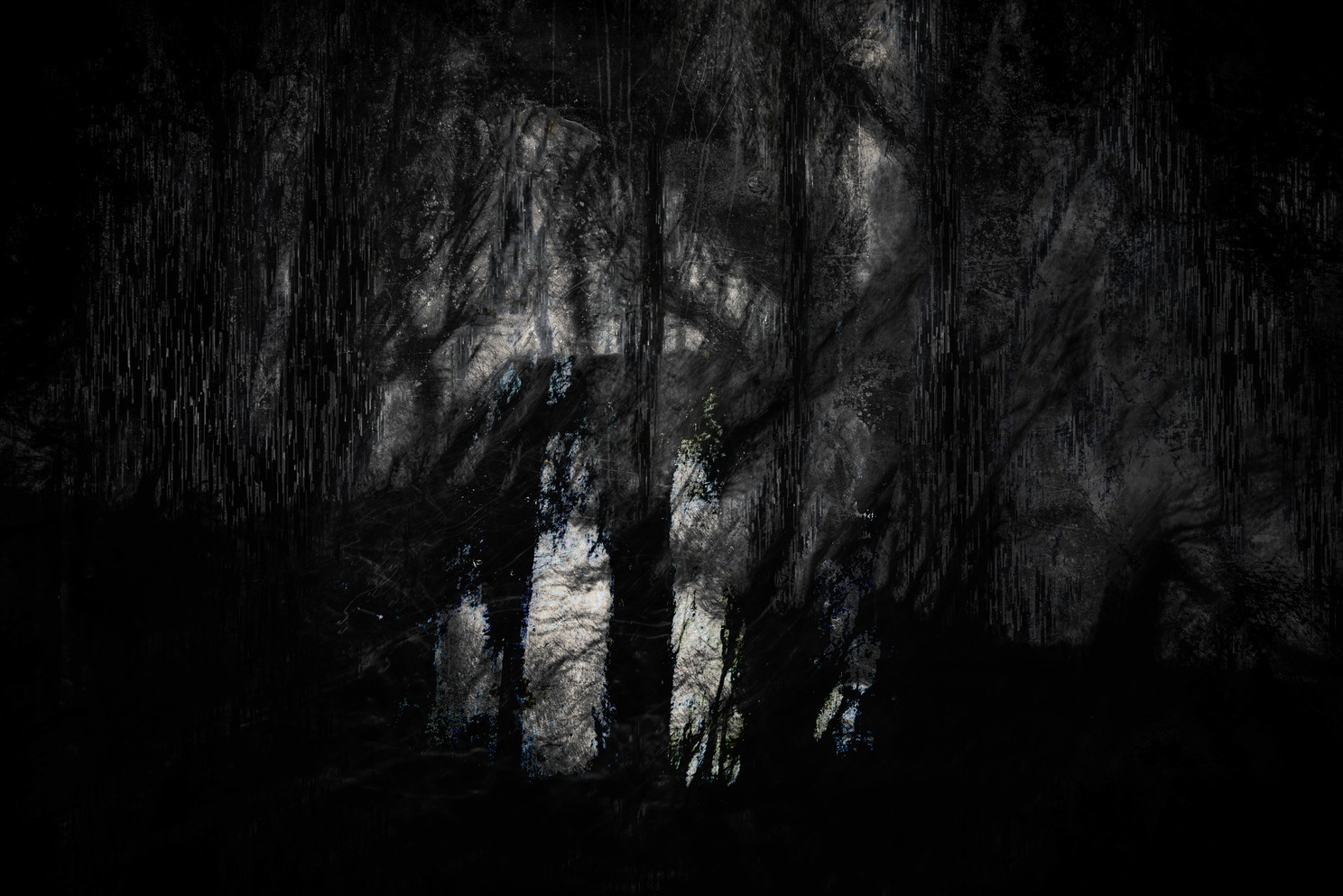 Creep (Copse) 016