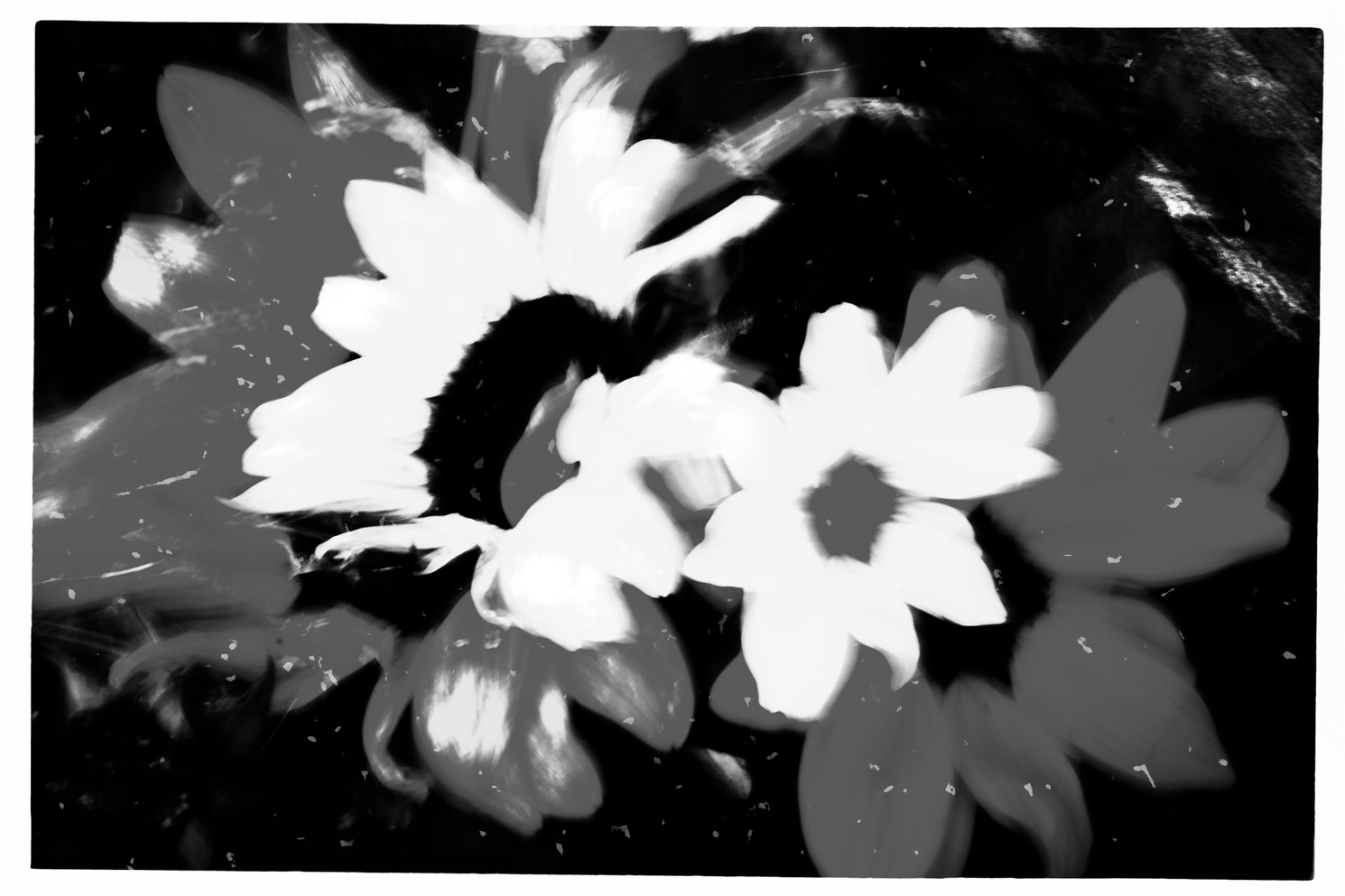 The Garden of Persephone 049