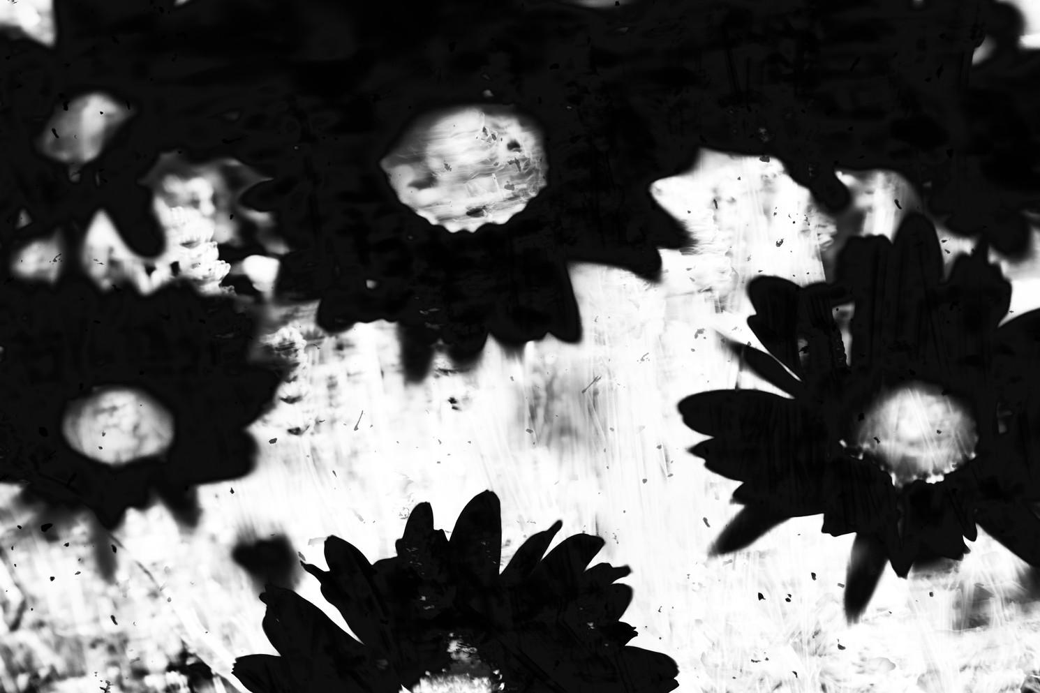The Garden of Persephone 025