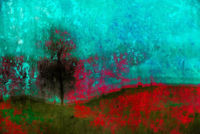 The Wishing Trees 022.jpg