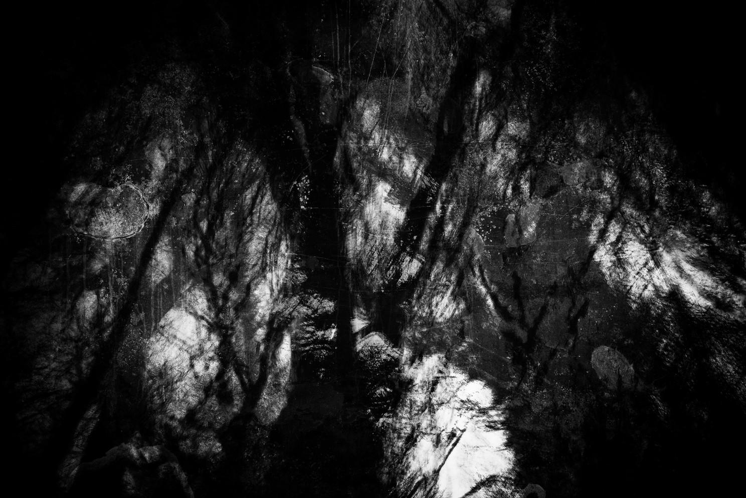 Creep (Copse) 029
