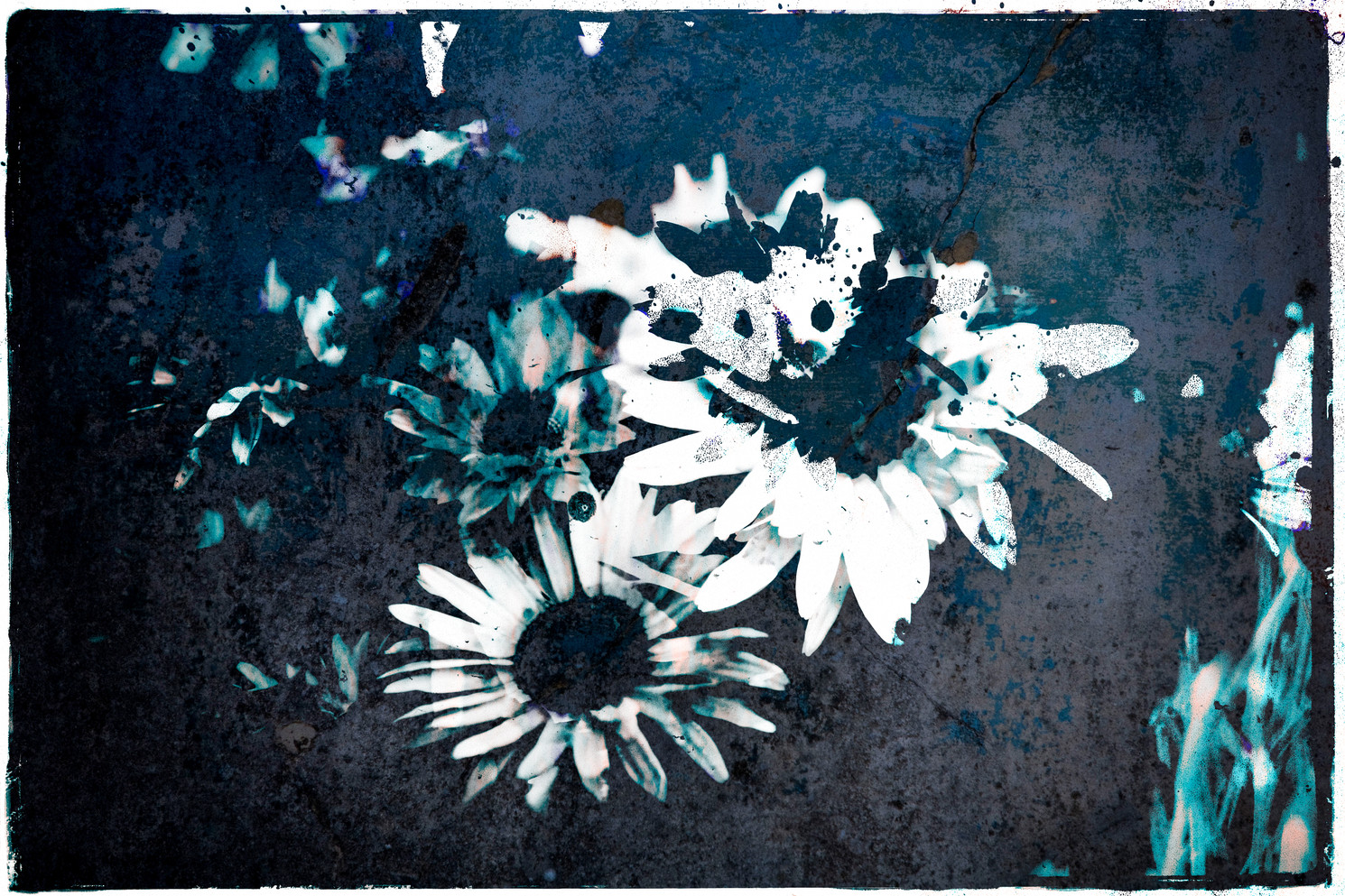 The Garden of Persephone 034