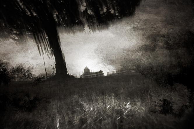 The Wishing Trees 012.jpg