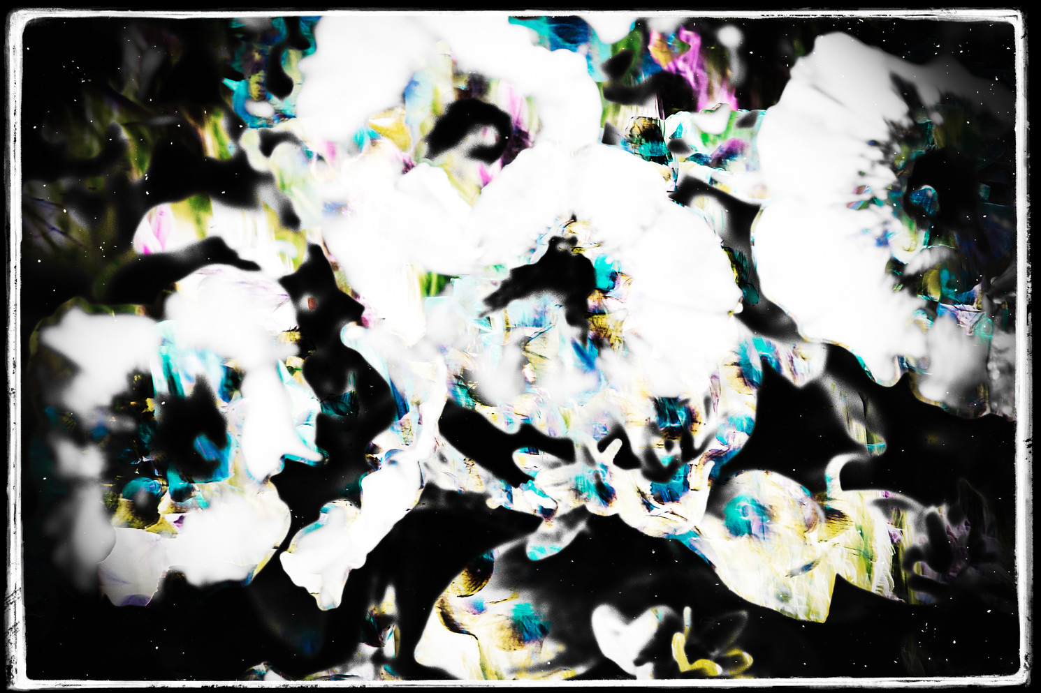 The Garden of Persephone 020