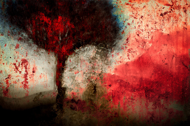 The Wishing Trees 024.jpg