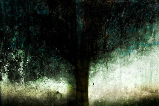 The Wishing Trees 021.jpg