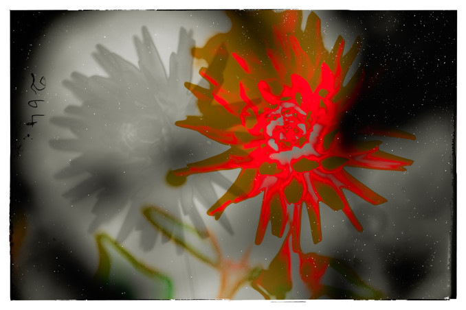 The Garden of Persephone 007
