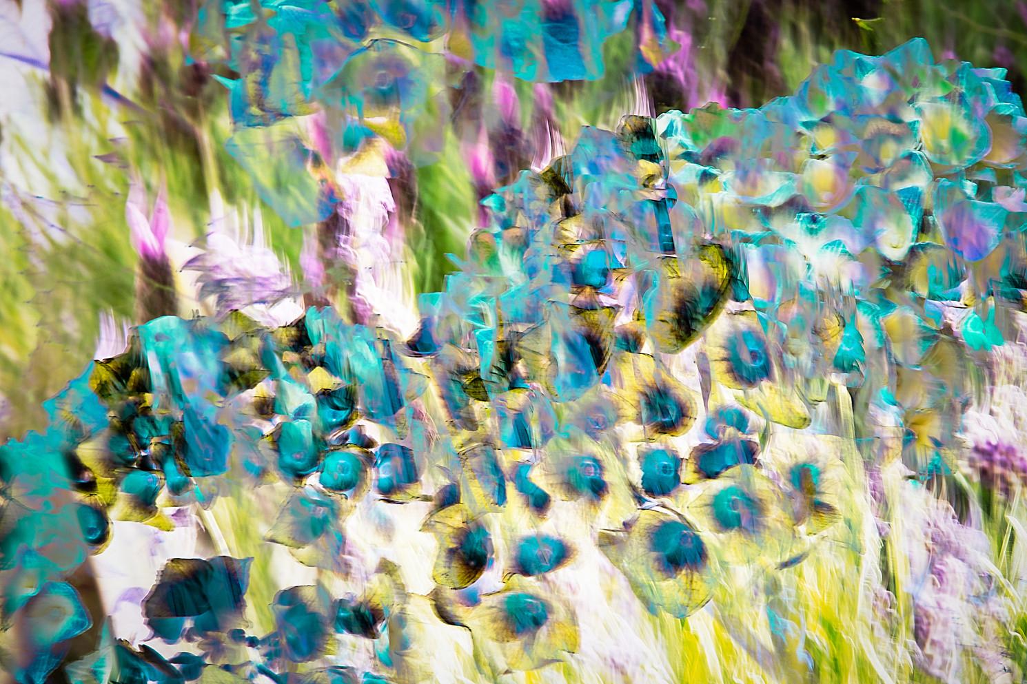 The Garden of Persephone 021