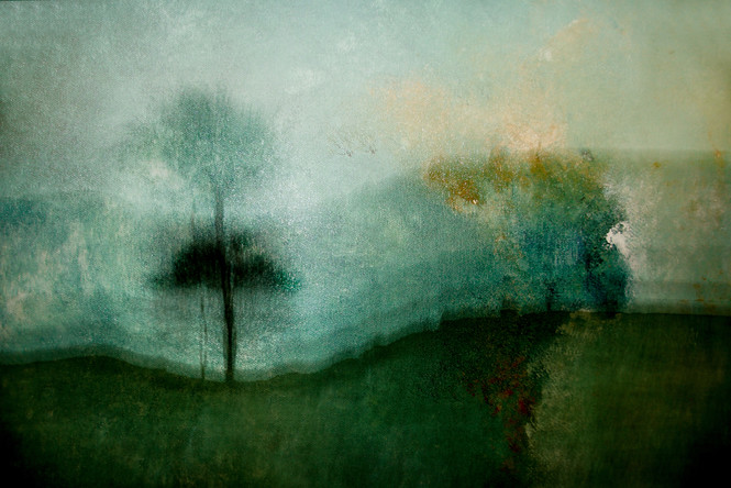 The Wishing Trees 002