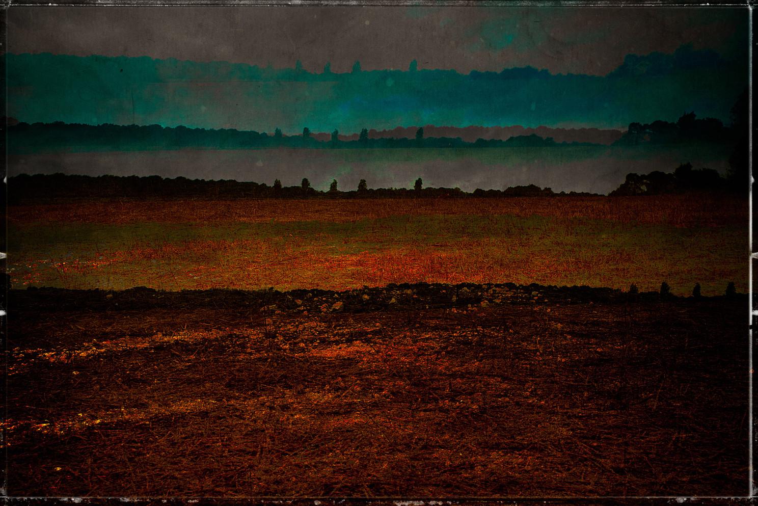 (September) Field Work 028