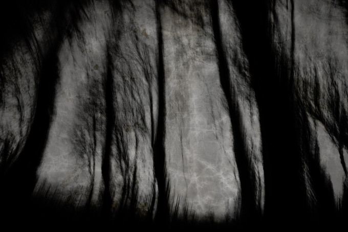 Creep (Copse) 006