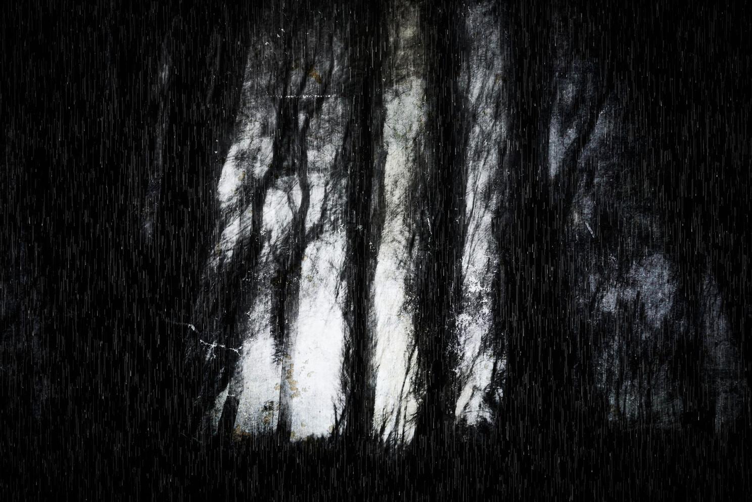 Creep (Copse) 015