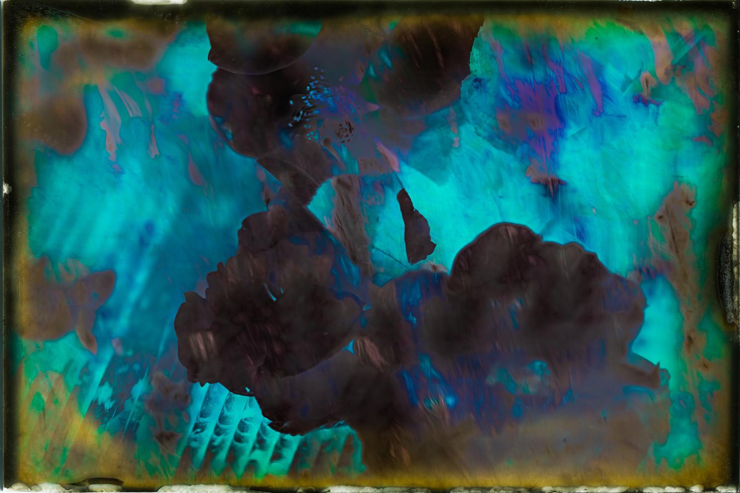 The Garden of Persephone 030