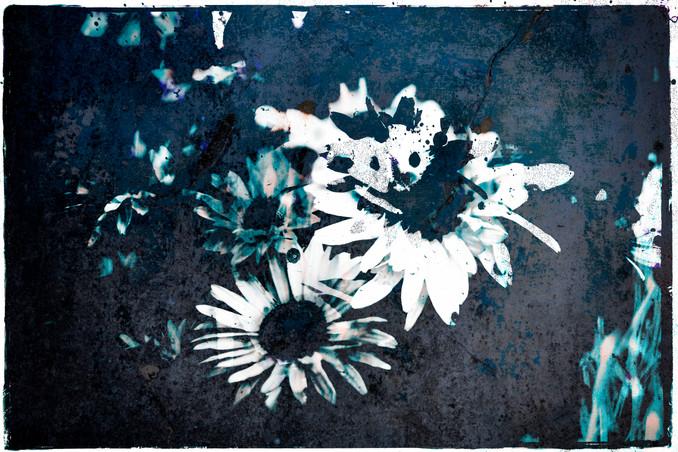 The Garden of Persephone 022