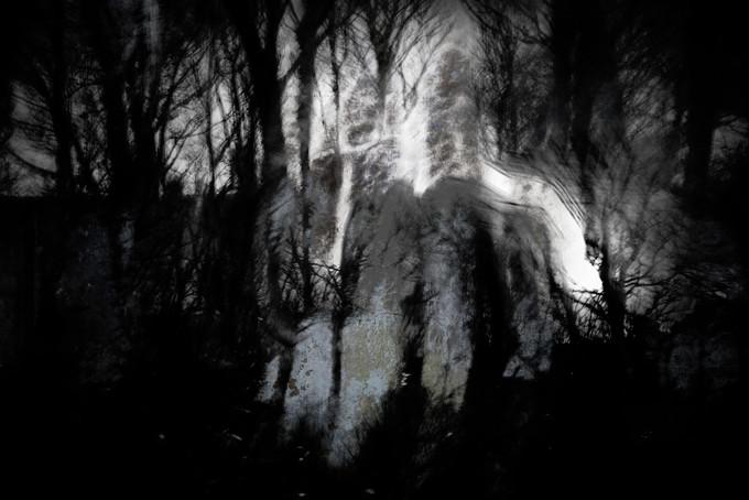 Creep (Copse) 017