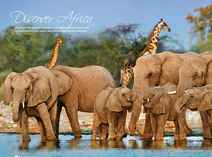2016 - 2017 Africa Safaris & Wildlife Cr