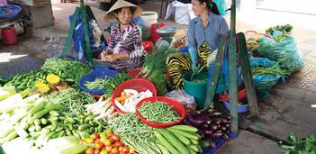 Fabulous Markets in Vietnam