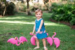 wing-family-maternity-coastal-click-photography-6159