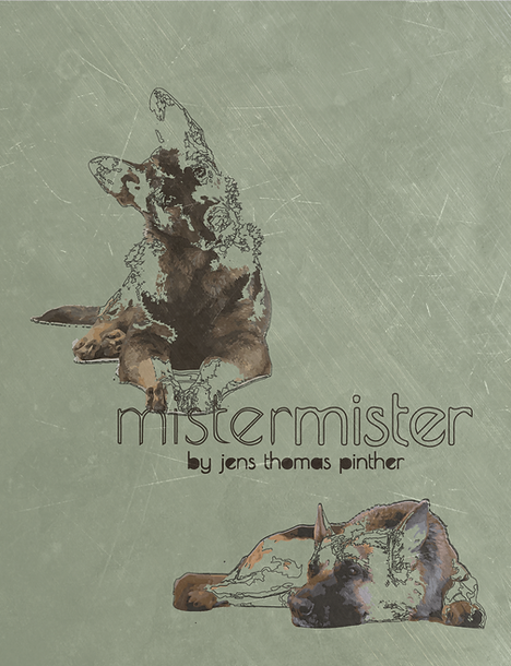 Mister Mister Front Cover