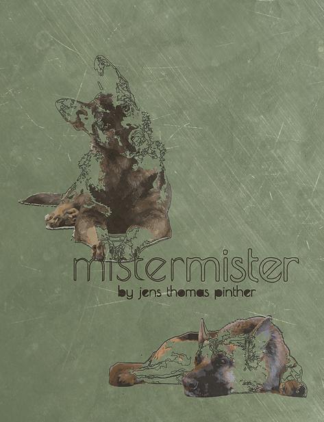 Mister Mister Front Cover