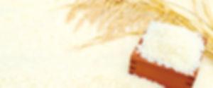 宮の華, 泡盛, 国産米泡盛, ひのひかり, 宮古島, 伊良部島