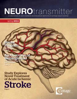 Neurotransmitter Spring 2014-1