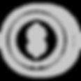 icons_Prancheta_1_cópia_2.png