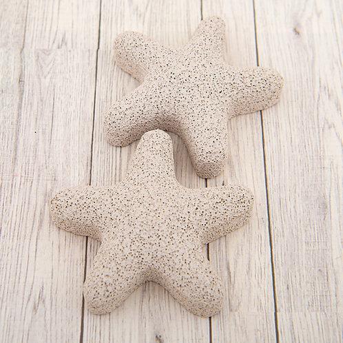 Starfish Pumice Stone