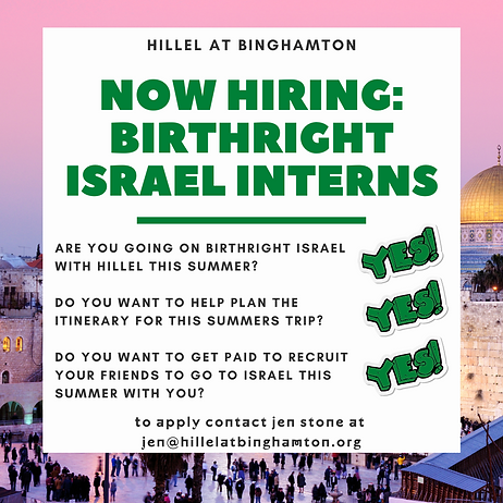 Birthright Israel interns.png
