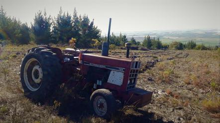 Farming 2.jpeg