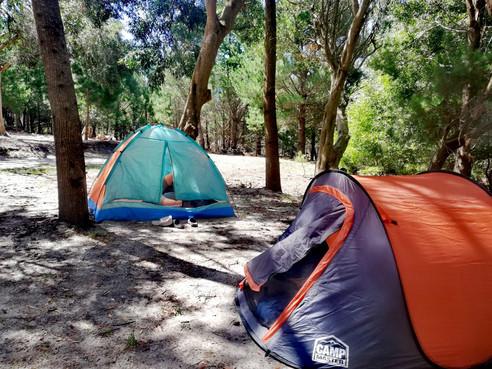Campsites 3