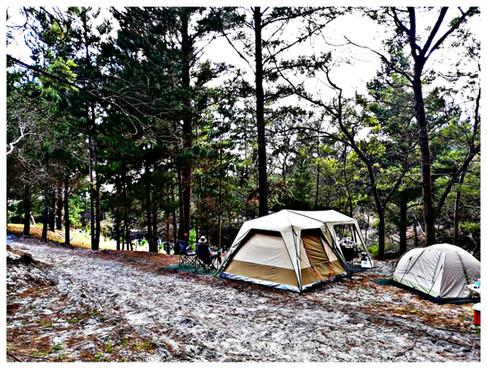 Campsites 5