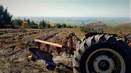Farming 3.jpeg