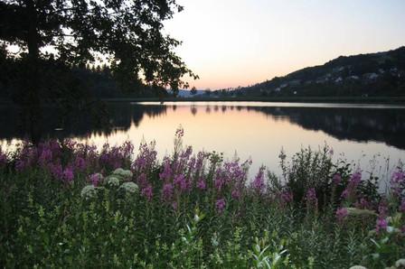 hillebachsee winterberg-Niedersfeld