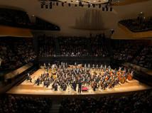 Concertgebouw Orchestra/Paris
