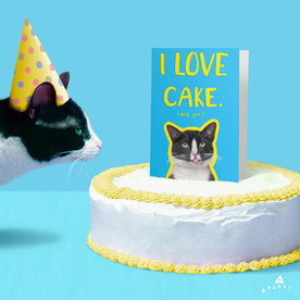 203282_I_Love_Cake_Cat_IG.jpg