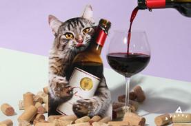 cat_wine_large.jpg