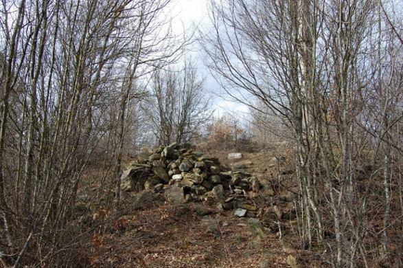 Остаци Марине куле код Куршумлије