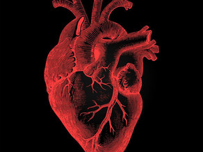 What Is Heart Disease? Cardiovascular Health Problems Explained