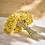 Thumbnail: Bouquet d'immortelles séchées de la Cova Fumada