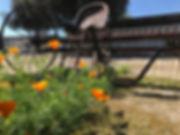 antique farm thresher