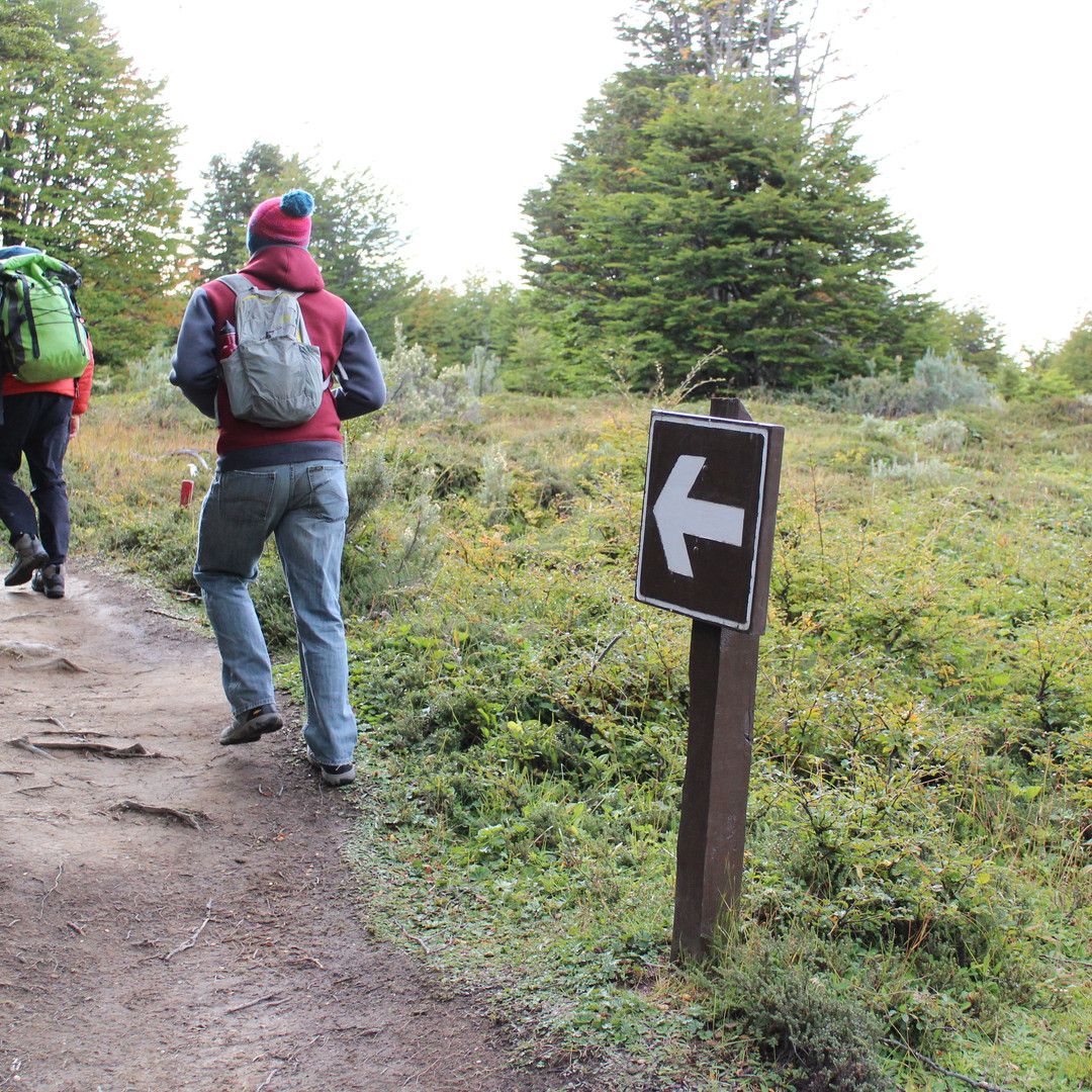 Hikers on a trail in the Reserva Forestal Magallanes near Punta Arenas, Chile.