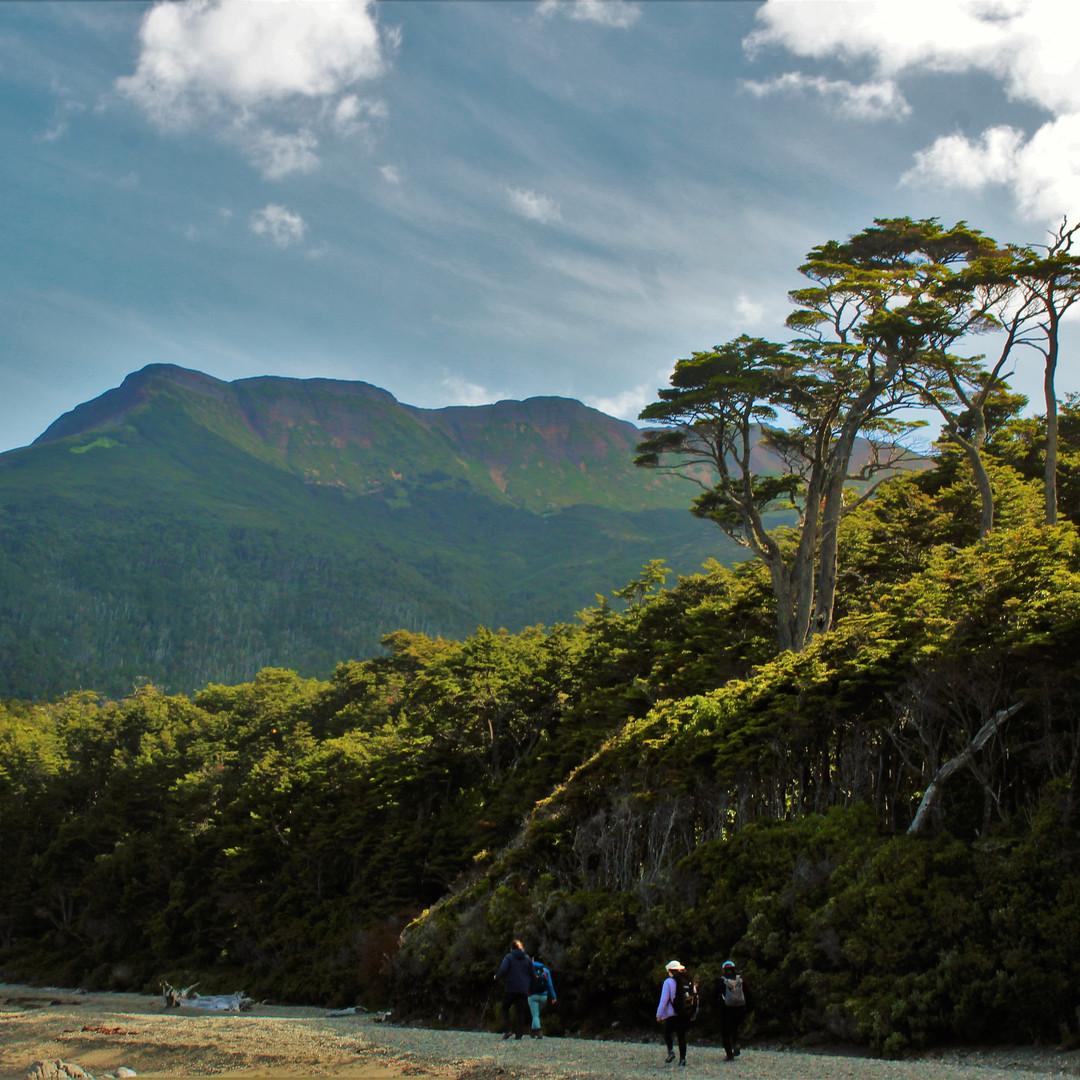 Beautiful Mount Tarn.jpg